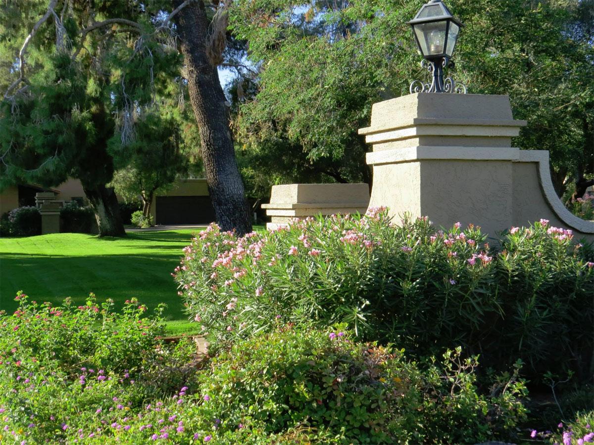 Soft Landscape Design