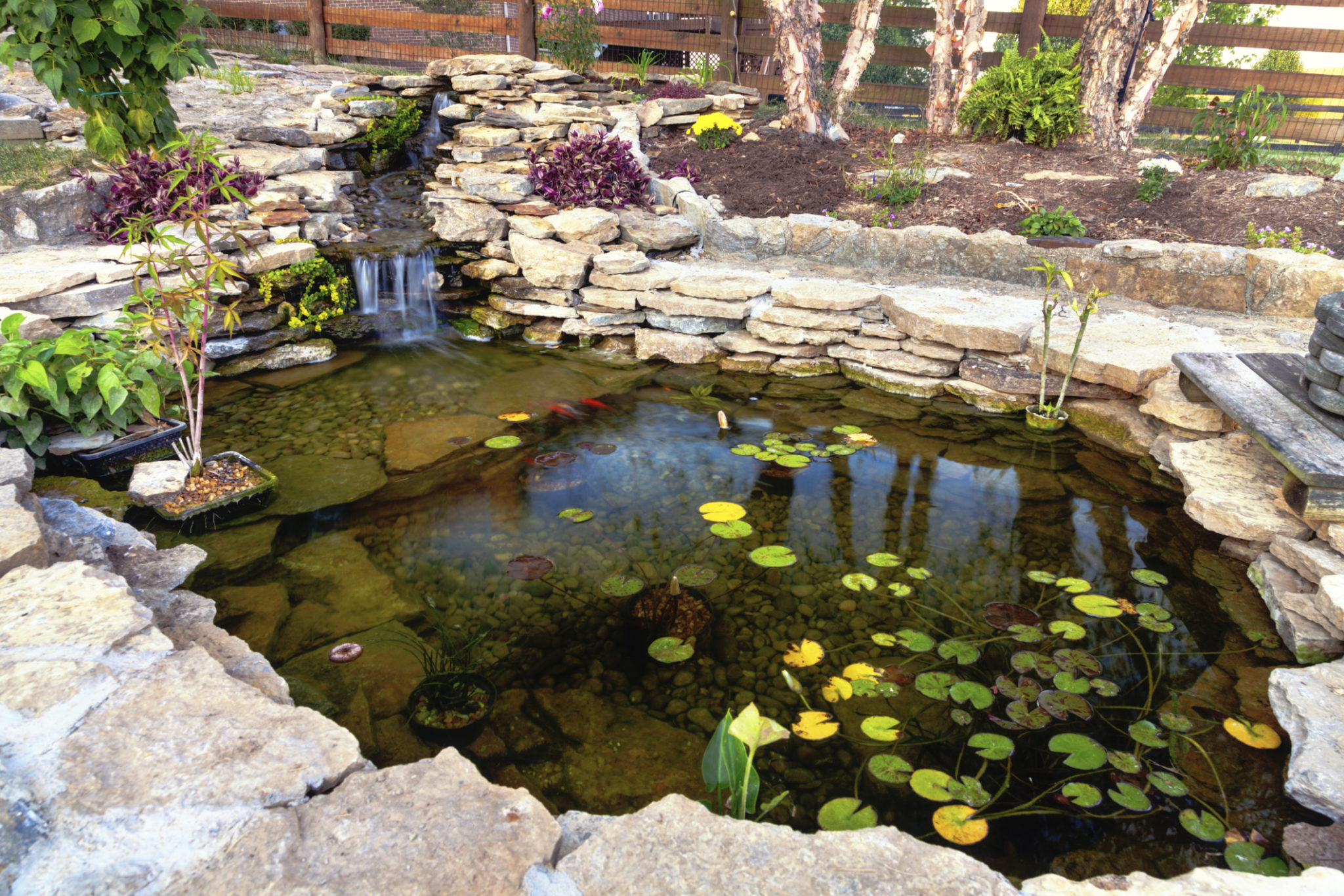Build A Pond Water Rocks