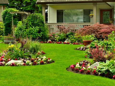 The Right Landscaping Company Grass Bushes