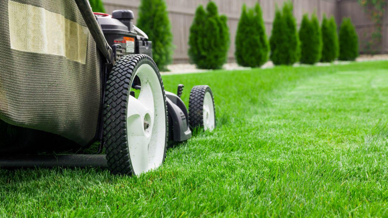 Maintain a Healthy Lawn Mower