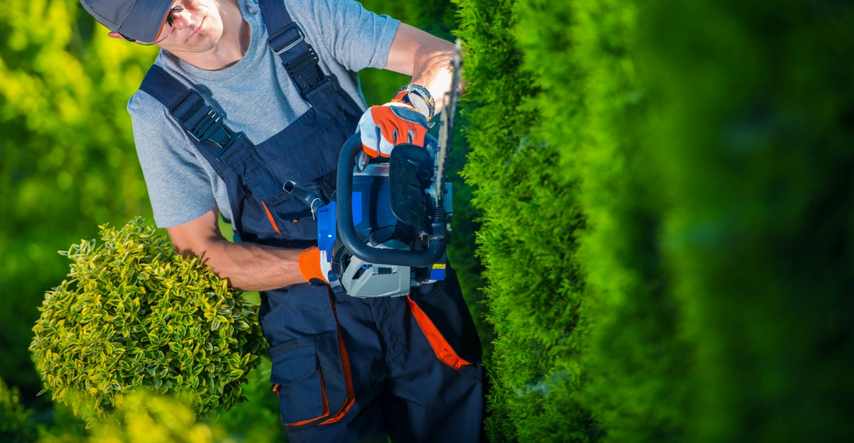 why you should hire a commercial landscaper