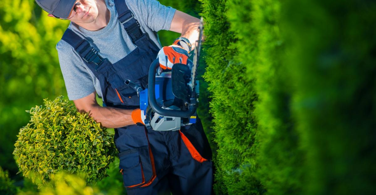 Commercial Landscaper Questions