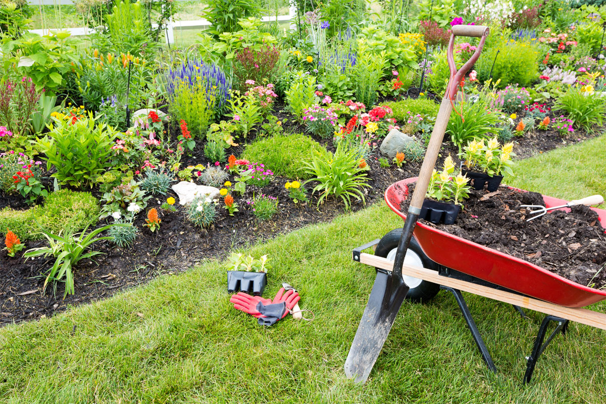 Landscaping Trends Shovel Soil