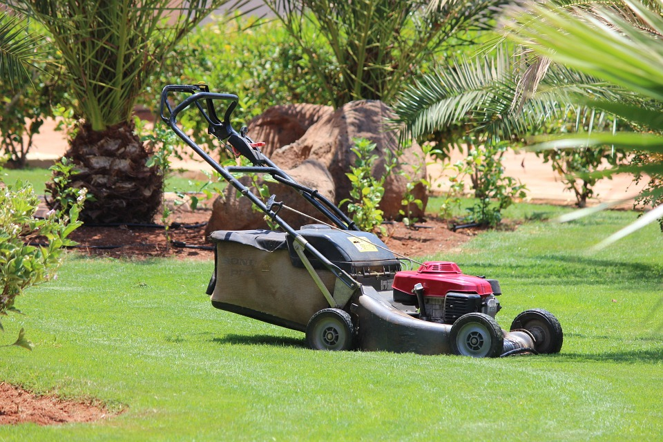 Mowing the Lawn Mower